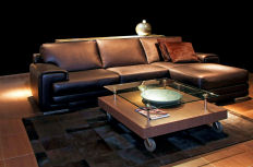leather furniture cleaning and conditionning